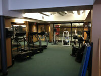 Ideal Fitness Facility for Trainer or Wellness Professional