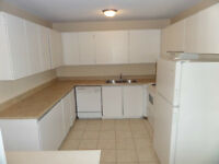 Extra Large 1, 2 Bedroom Apartment With Dishwasher
