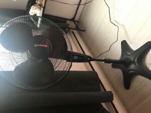 Fan with remote control and 5 settings