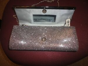 Beautiul Sparkly Clutch New w/ Tags Reduced