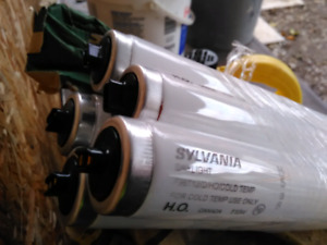 20 Sylvania Daylight Bulbs (NEW)