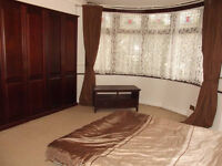 Large Double Room Available in Large House