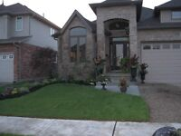 ROOM TO RENT IN BUNGALOW IN BRESLAU FOR MARCH 15