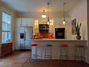 2BR LUXURY APT FURNISHED PLATEAU (PARC LAFONTAINE) WITH GARDEN