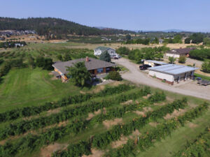 2 Homes on 5 acre Fruit Orchard!- 9850 Read Road, Lake Country