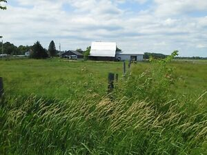 Muskoka Working/Hobby Farm/Fully Fenced-$600,000.00
