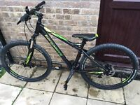 Bergamont mountain bike