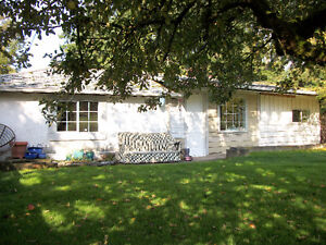 Gardener's Delight - 2 bdrm cottage on hobby farm in Cow Bay