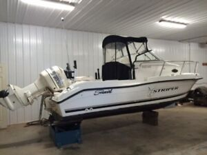 2001 Striper 1851 Seaswirl
