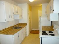 Attractive 2 (TWO) Bedroom Apartment at Great Park St. Location!