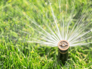 Landscaping and irrigation services.TRADES WELCOMED