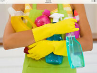 HIGH  QUALITY  UKRAINIAN  CLEANING  SERVICES !!!