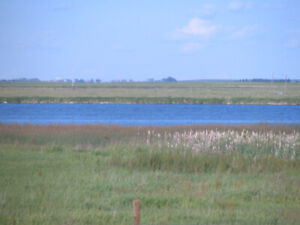 Acreage lots for sale Taber