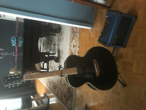 Electric Acoustic Stagg Guitar, Stand & Amp