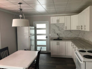 Room in renovated 2 bedroom apartment in downtown Hull