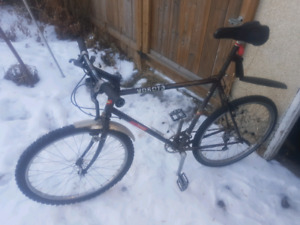 Road Bike with Studded Tires and Fenders