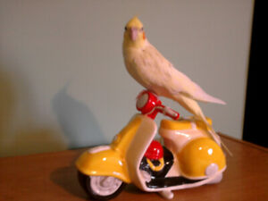 BIRDS AND TOYS