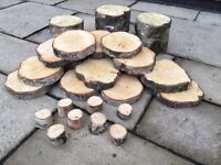 Silver birch Log/log slices perfect for weddings