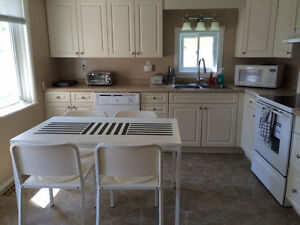 Roommate wanted for House near Algonquin College