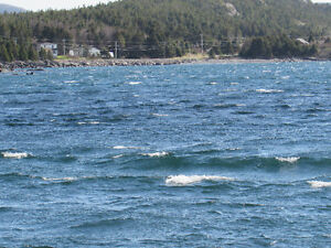 200 FT OCEANFRONT PROPERTY..COLLIERS, OPPORTUNITY KNOCKS! St. John's Newfoundland image 7