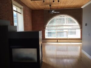 Historic Lewis Loft in excellent downtown location