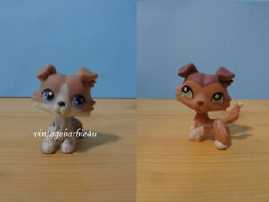 Littlest Pet Shop LPS Collie Dog Lot #67 #1330 Blue Eyes