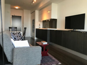 FULLY FURNISHED, Great Location, 1-Bedroom+Den, Wifi, Parking!