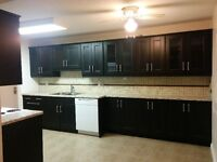 Renovated 2 bedrooms + large storage