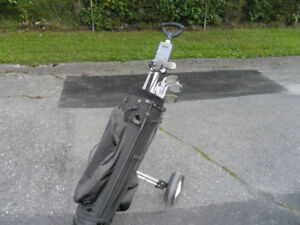 Voiturette de golf à vendre