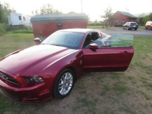 2014 Ford Mustang pony  premium package Coupe (2 door)