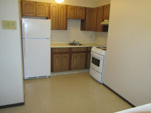 Rent Today OR Nov 1st (2 bdrm apt-MonthlyLease/PetsConsidered)