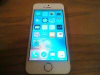 iphone 5S 16gb Gold Telus