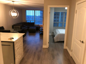 1 Bedroom Furnished Condo - Fully Renovated