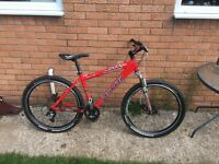 Specialized hard rock comp mountain bike
