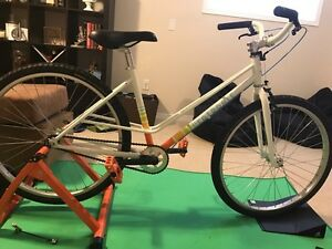Fairdale Flyer single speed  Kitchener / Waterloo Kitchener Area image 4