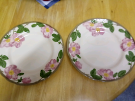 PAIR OF LARGE ROUND PLATES, BY JOHNSON'S IN FRANCISCAN DESIGN