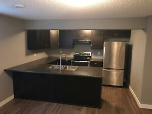 BEAUTIFUL NEW 2 BED 1 BATH BASEMENT SUITE SHERWOOD PARK!