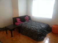 $650 - Internet Included - Bright and spacious 1 1/2 - Downtown