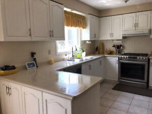 Oak kitchen cabinets for sale