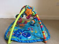 Free Baby play gym