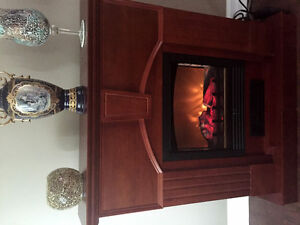 Electric Fireplace Brand New