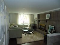 Bright and large 1 bedroom - Burlington