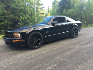 Mustang | Great Deals on New or Used Cars and Trucks Near Me