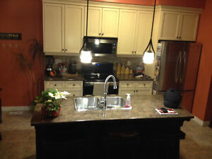Countertops and sink for sale - Like new!