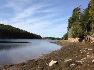 WATERFRONT - 6 ACRES - St. George, NB - 700 Ft of Shoreline