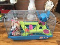 Large Syrian Hamster Cage