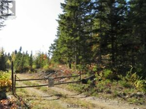 123 Acres for sale in Stewarton, N.B with a camp on it!!!