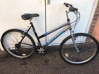 Ladies falcon mountain bike