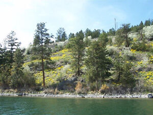 Lot 1 8700 Tronson Road, Vernon - Waterfront with gorgeous views