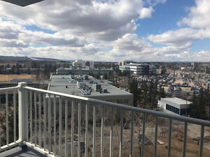 Brentwood U of C apartment looking for roommate